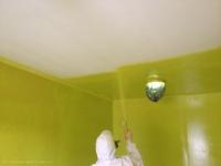 Цветная побелка потолка